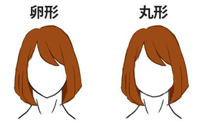 同じ髪型で顔の形による比較画像