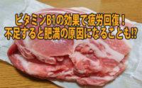 豚肉のアイキャッチ画像