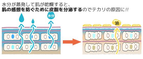 肌の乾燥が皮脂の排出を促す