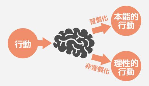 習慣化できない理由は「脳」の働きにある